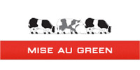 Magasin Mise au Green